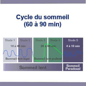 La phase de sommeil lent profond et propice à la consolidation de souvenirs. Ainsi, la technique de réactivation mnésique s'avère efficace durant cette phase.