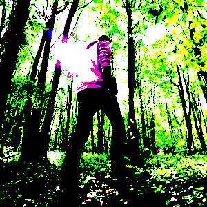 Les arbres et la nature en général ont de multiples bienfaits sur notre santé physique et mentale, et les bains de forêt s'avèrent particulièrement efficaces.