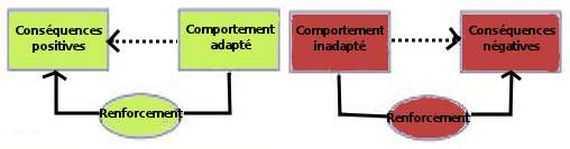 Skinner a développé une thérapie comportementale par renforcement positif ou négatif, afin de modifier des comportements inadaptés pour les rendre plus adaptés.