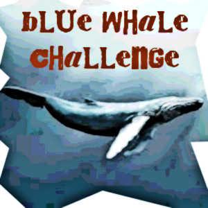 Le Blue Whale Challenge est un jeu de défis particulièrement dangereux qui sévit actuellement sur le web et risque d'être fatal pour les adolescents les plus fragiles.