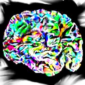 La théorie selon laquelle nous n'utilisons que 10% de notre cerveau n'est qu'un mythe, pour de multiples raisons...