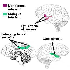Le langage intérieur fait intervenir le cortex cingulaire postérieur et le précunéus en plus des gyrus frontal et temporal déjà activés dans un monologue silencieux.