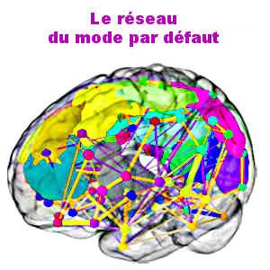 Le neurotempérament correspond au lien existant entre la personnalité d'un individu et son activité cérébrale lorsqu'il est au repos (le réseau par défaut).
