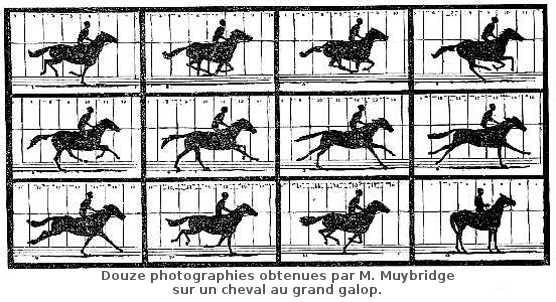 Douze photographies obtenues par M. Muybridge sur un cheval au grand galop.