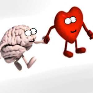 Le coeur communiquerait avec le cerveau et déclencherait ainsi le sentiment de soi.