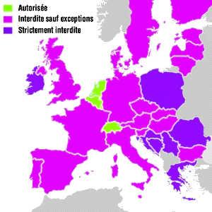 En Europe, l'euthanasie n'est autorisée que dans certains pays tels que la Suisse, la Belgique, le Luxembourg ou les Pays-Bas.