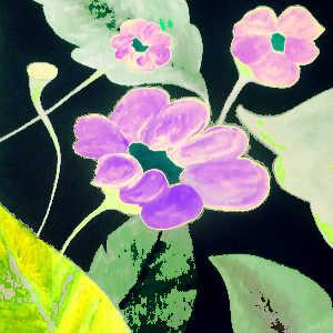 Les fleurs ont un impact positif sur notre comportement et notre humeur. Elles améliorent notre bien-être.