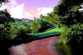 Les hallucinations visuelles correspondent le plus souvent à des transformations des éléments environnants (au niveau des couleurs, des formes des perspectives...).