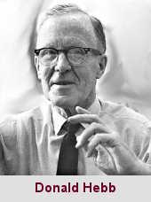 Donald Olding Hebb, psychologue (1904-1985).