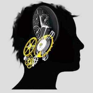Afin d'expliquer notre capacité à estimer le temps, les chercheurs en psychologie supposent que nous possédons une horloge interne.