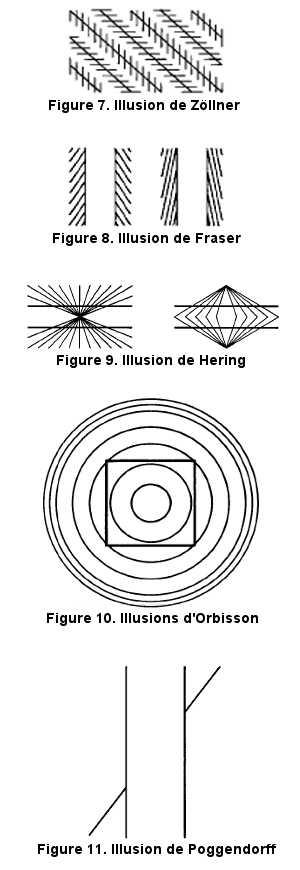 Les illusions d'angles et d'orientation.