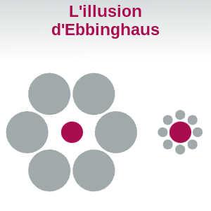 L'illusion d'Ebbinghaus permet de mettre en évidence le lien entre la perception et la performance de certains sportifs.
