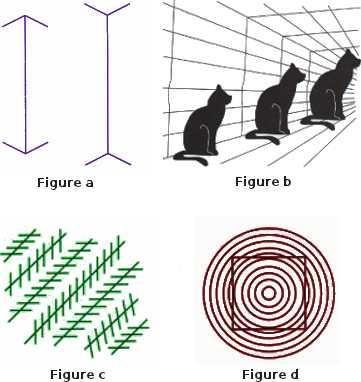 Différentes illusions visuelles, dont la plus connue est celle de Miller-Lyer.