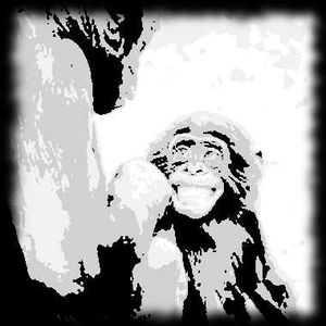 Le mamanais gorille est un langage gestuel utilisé par les gorilles lorsqu'ils communiquent avec des tout petits.