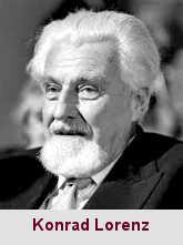 Konrad Lorenz, éthologiste (1903-1989).