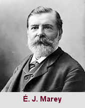 Étienne-Jules Marey, médecin et physiologiste (1830-1904).