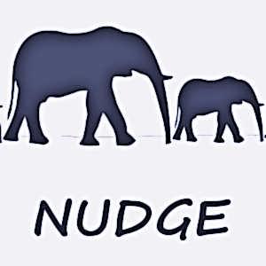 Le nudge est une solution simple et peu coûteuse, inspirée des sciences comportementales, pour améliorer les politiques publiques.