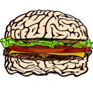 L'obésité a de graves conséquences sur le cerveau, en atrophiant une partie de celui-ci.