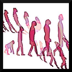 Le machisme en politique tend à rappeler certains comportements de domination que l'on peut observer chez les primates.