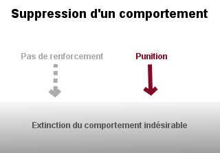 Pour supprimer un comportement inapproprié, la procédure d'extinction et le renforcement négatif par punition peuvent être mis en oeuvre.