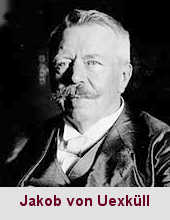Jakob von Uexküll, biologiste et psychophysiologiste (1864-1944).