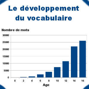 L'acquisition du vocabulaire s'accélère au fil de la scolarité de l'enfant, pour atteindre environ 26 000 mots en troisième.